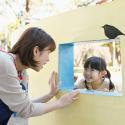 幼稚園教員・保育士採用数☆全国1位☆が更新されました。